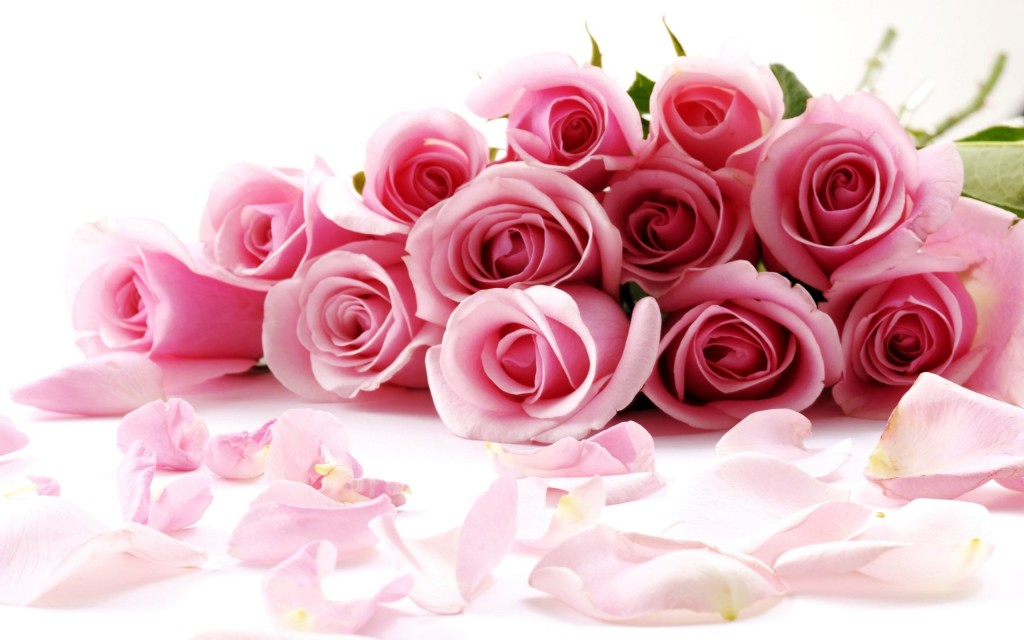 Valentines-Day-Roses