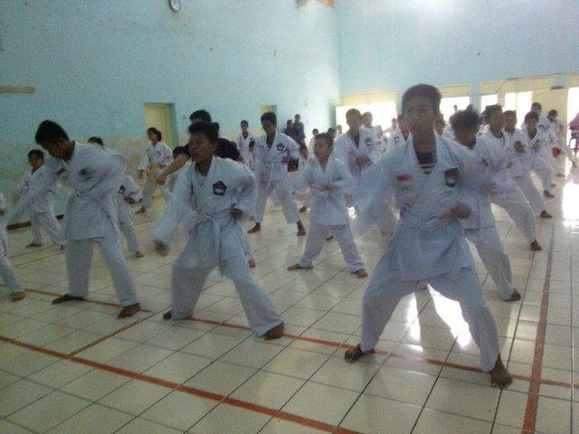 olahraga-ybm8